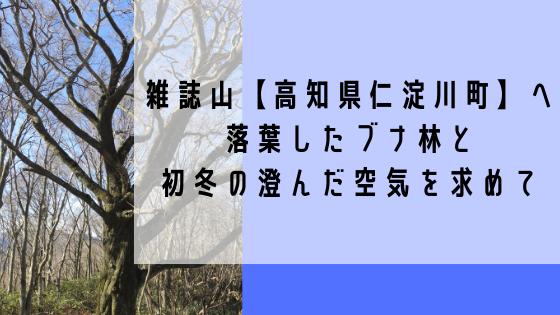 雑誌山【高知県仁淀川町】へ。落葉したブナ林と初冬の澄んだ空気を求めて