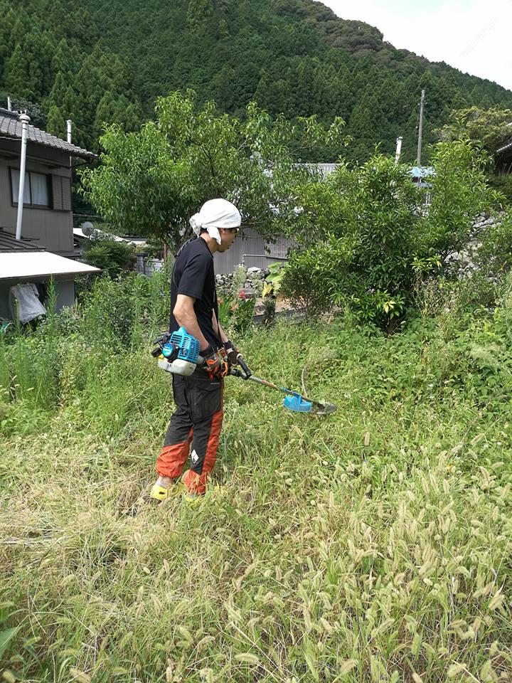 田舎暮らしをするなら「草刈り」は絶対避けて通れない7つの理由