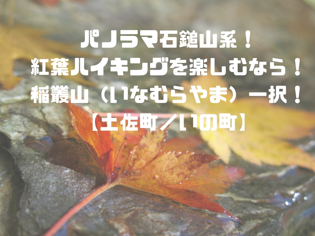 パノラマ石鎚山系!紅葉ハイキングを楽しむなら!稲叢山(いなむらやま)一択!【高知県土佐町/いの町】 |...