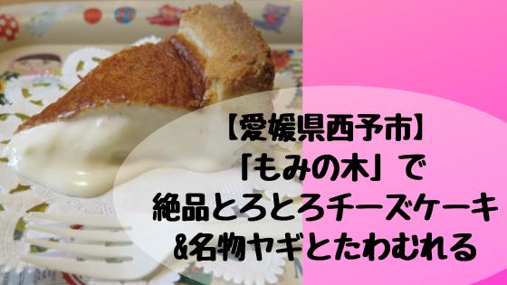 【愛媛県西予市】「もみの木」で絶品とろとろチーズケーキ&名物ヤギとたわむれる