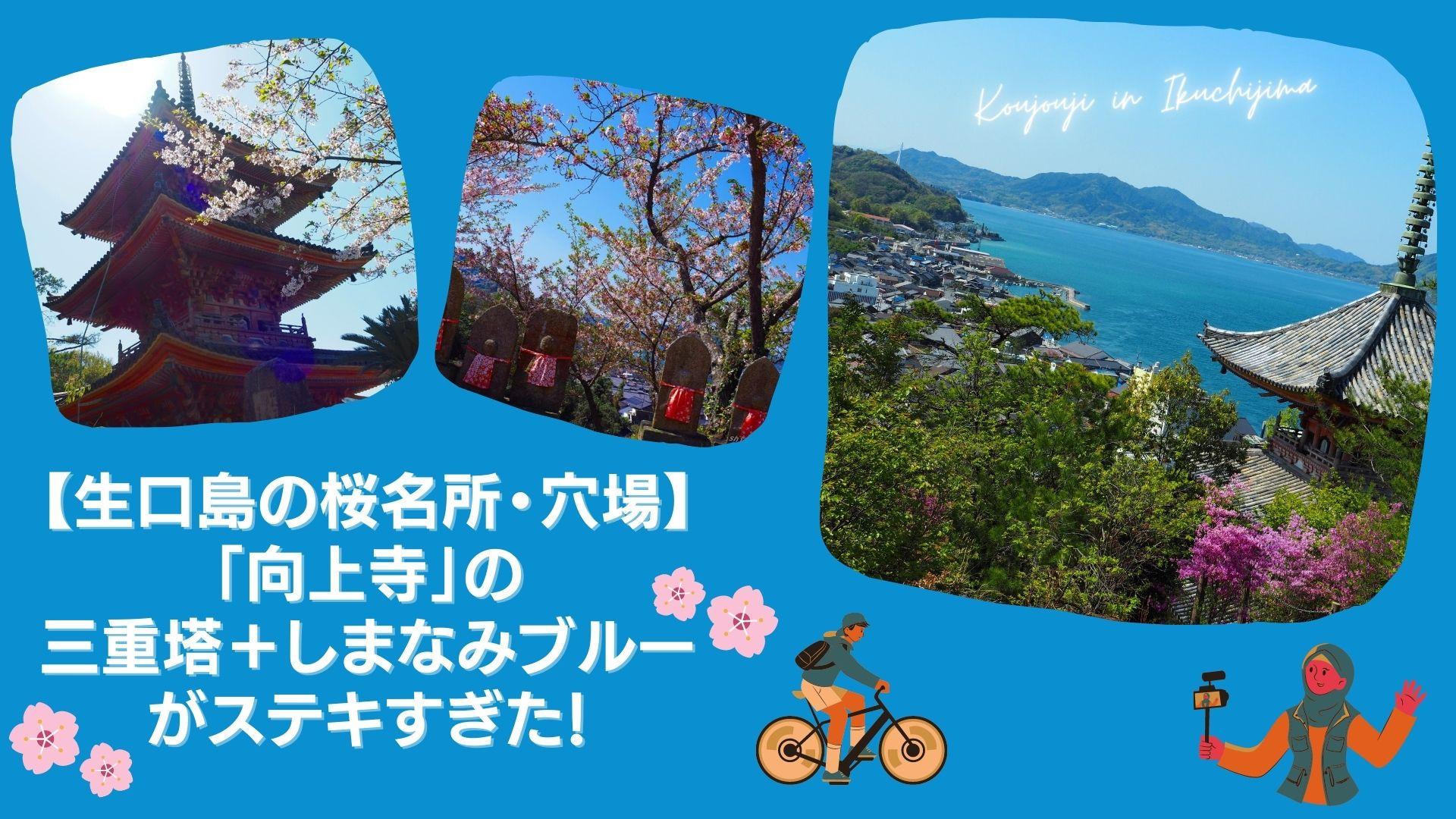 【生口島の桜名所・穴場】「向上寺」の三重塔+しまなみブルーがステキすぎた!